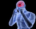 red brain, blue body_103520693